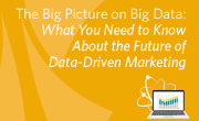 The Big Picture on Big Data:What You Need to Know About the Future of Data-Driven Marketing