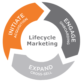 lifecycle-triangle