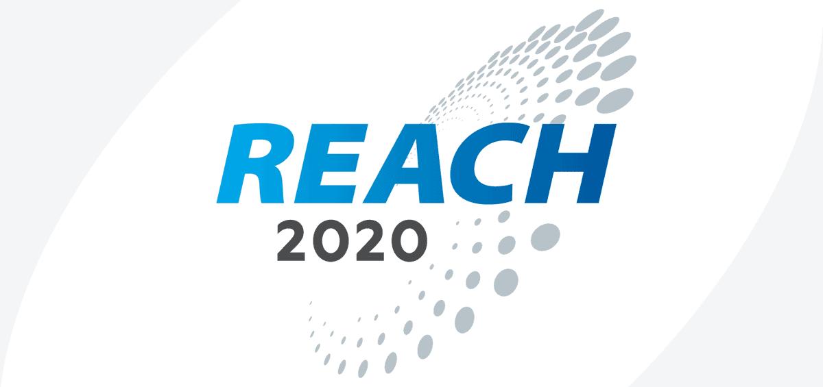 Reach 2020 logo